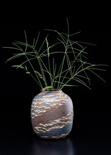 陶器の花瓶とオヒシバの写真素材 [FYI02437409]
