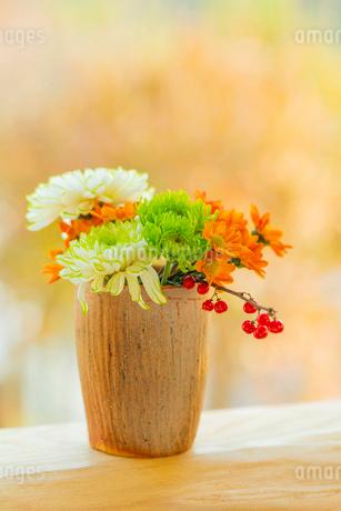キクの花とツルウメモドキと陶器の器の写真素材 [FYI02437591]