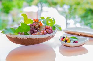 白い陶器の器とブルーベリーとブドウの写真素材 [FYI02437694]