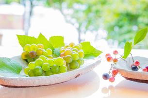 白い陶器の器とブルーベリーとブドウの写真素材 [FYI02437738]