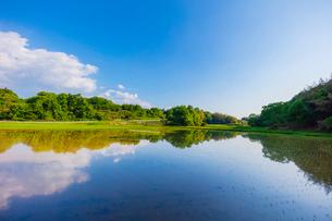 田植え後の水田と里山の風景の写真素材 [FYI02437971]