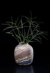 陶器の花瓶とオヒシバの写真素材 [FYI02438006]