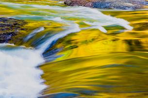 紅葉に映える片品川の流れの写真素材 [FYI02438055]