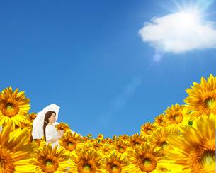 ひまわり畑に立つ女性の写真素材 [FYI02446441]