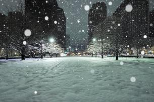 大雪の深夜の行幸通りと丸の内のビル群の写真素材 [FYI02446889]