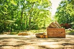 薪と薪が入った木箱の写真素材 [FYI02448689]
