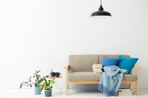 ソファとその横にあるミニテーブルとグリーンの写真素材 [FYI02448709]