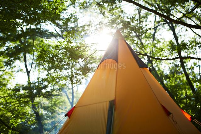 キャンプ場に貼られたティピー型のテントの写真素材 [FYI02450517]