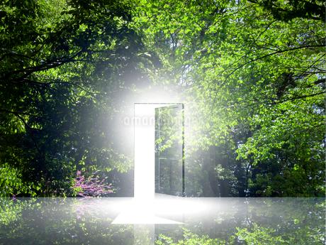光が射し込むドアの写真素材 [FYI02451351]
