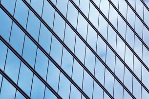 高層ビルの窓の写真素材 [FYI02451493]
