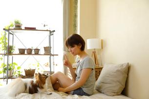 ベッドで小型犬と過ごす若い女性の写真素材 [FYI02454278]