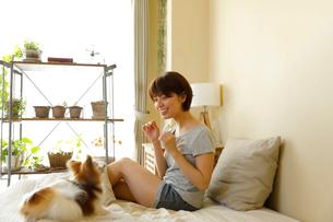 ベッドで小型犬と過ごす若い女性の写真素材 [FYI02455031]