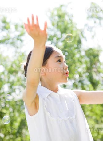 新緑の中でシャボン玉で遊ぶ女の子の写真素材 [FYI02456977]