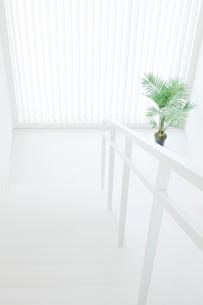 上から見下ろした白い階段の写真素材 [FYI02457214]