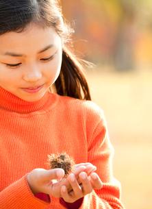 紅葉の中で栗を持つ小学生の女の子の写真素材 [FYI02457252]