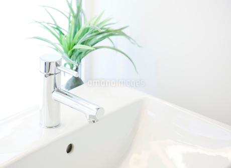 洗面台の写真素材 [FYI02457320]