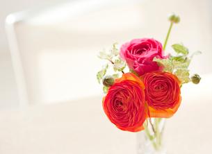 食卓の上に飾られた花の写真素材 [FYI02457409]