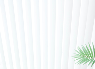 窓際にある観葉植物の写真素材 [FYI02457411]