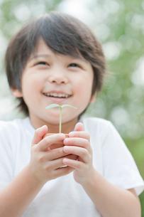 双葉を持つ笑顔の男の子の写真素材 [FYI02457664]