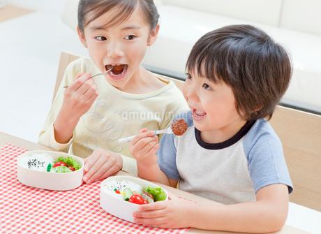 お弁当を食べる女の子と男の子の姉弟の写真素材 [FYI02457800]