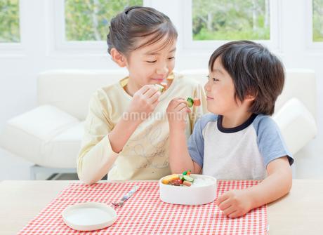 お弁当を食べる女の子と男の子の姉弟の写真素材 [FYI02457874]
