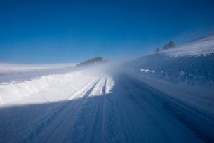 地吹雪の霧ヶ峰ビーナスラインの写真素材 [FYI02460310]
