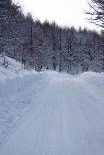 雪の霧ヶ峰ビーナスラインの写真素材 [FYI02460478]