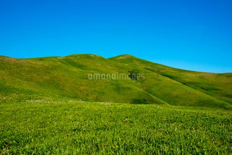 三峰山の写真素材 [FYI02460871]
