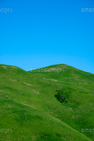 青空と三峰山の写真素材 [FYI02460919]
