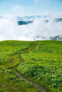 三峰山トレッキングルートと雲海の写真素材 [FYI02460926]