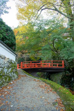 京都大原の朝未明橋の写真素材 [FYI02461207]