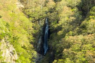 八滝の写真素材 [FYI02462006]