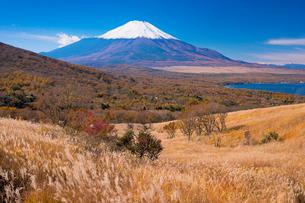 秋の富士山と山中湖の写真素材 [FYI02462684]