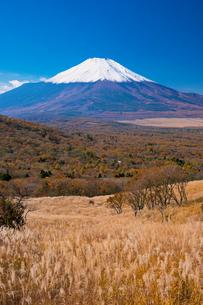 秋の富士山と山中湖の写真素材 [FYI02463626]