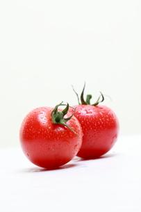 トマトの写真素材 [FYI02465093]