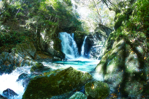 音水渓谷の滝の写真素材 [FYI02465433]
