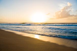 オアフ島ノースショアの夕暮れの写真素材 [FYI02466686]