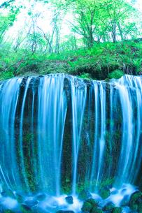 滝状の岩清水と新緑の樹林の写真素材 [FYI02466745]