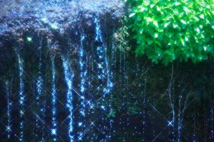 輝く滝状の岩清水と若葉の写真素材 [FYI02466873]