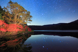水鏡のドウダンツツジなどの紅葉の樹林と星空の写真素材 [FYI02467328]