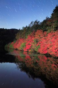 水鏡のドウダンツツジなどの紅葉の樹林と星空の写真素材 [FYI02467532]