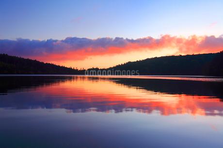 水鏡の白駒池の水面と朝焼けの雲の写真素材 [FYI02467798]