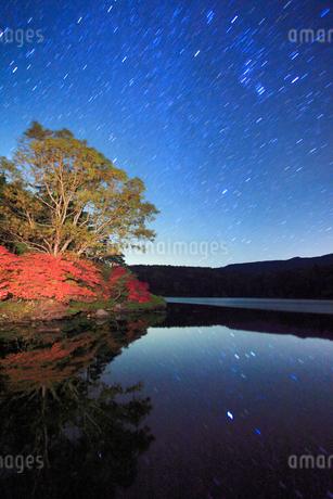 水鏡のドウダンツツジなどの紅葉の樹林と星空の写真素材 [FYI02468148]