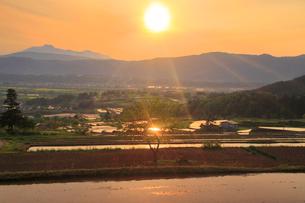 輝く福島の棚田と菜の花公園と妙高山と夕日の写真素材 [FYI02468537]