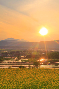福島の棚田から望む菜の花公園と妙高山と夕日の写真素材 [FYI02468668]