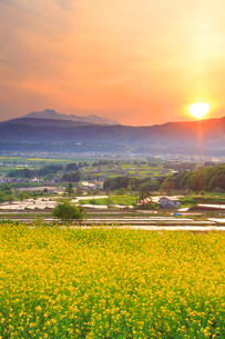 福島の棚田から望む菜の花公園と妙高山と夕日の写真素材 [FYI02468718]
