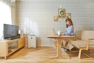 リビングルームでソファに座りパソコン作業をする女性の写真素材 [FYI02468917]