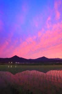 水鏡の田園と夫神岳と女神岳と夕焼けの写真素材 [FYI02469120]