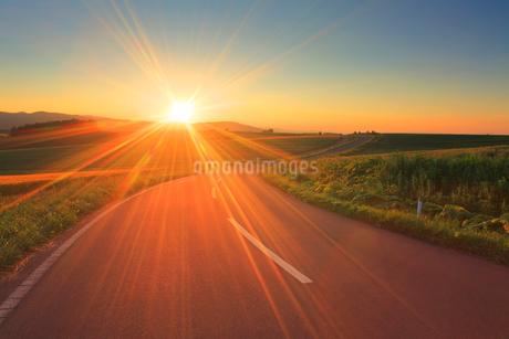 パッチワークの路と夕日の光芒の写真素材 [FYI02470501]