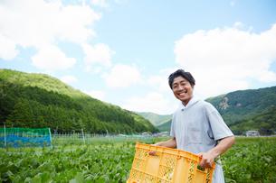 畑で野菜が入ったカゴを持つ男性の写真素材 [FYI02471418]